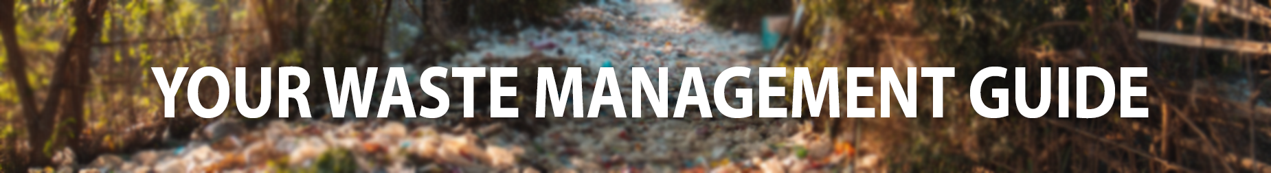 Your ultimate guide to understanding waste management header image